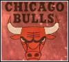 bulls chicago